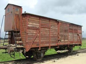 Vagone utilizzato per il trasporto dei prigionieri.