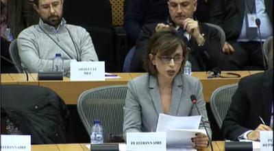 Antonia Battaglia in Commissione Petizioni