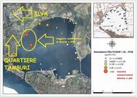 L'inquinamento del Mar Piccolo a Taranto