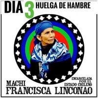 Cile: la Corte d'Appello concede i domiciliari alla machi Francisca Linconao
