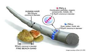 PM10 e PM2.5