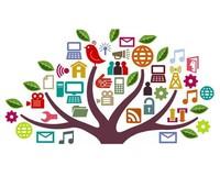 Ecodidattica e didattica per competenze