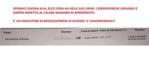 Un esempio di analisi dell'idrossipirene urinario. Per evitare rischiose esposizioni, controlla che il valore non superi 0,7 mcg/g.