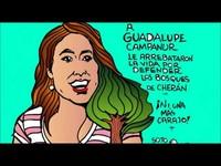 Messico: sulla morte dell'indigena purépecha Guadalupe Campanur l'ombra del crimine organizzato