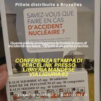 Emergenza nucleare, ecco l'opuscolo distribuito a Bruxelles e che andrebbe distribuito anche nei porti italiani a rischio nucleare