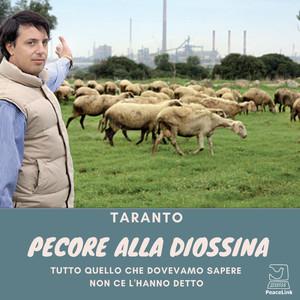 Pecore alla diossina a Taranto. Nella foto l'allevatore Vincenzo Fornaro. Sullo sfondo l'ILVA.