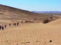 I desaparecidos del Sahara