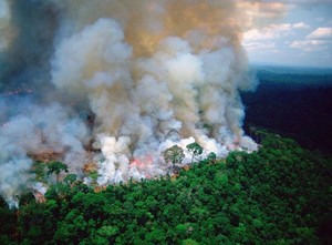 La Foresta Amazzonica in fiamme