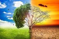 Lezione di Ecodidattica sui cambiamenti climatici
