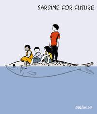 Riflessioni di una sardina