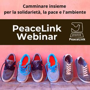PeaceLink webinar