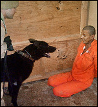 A U.S. soldier appears to be using both hands to restrain a dog facing an Iraqi detainee in the Abu Ghraib prison. (The Washington Post)