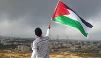 Intervista a una giovane attivista per la Palestina: Vane Marinello