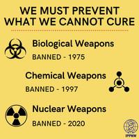 La proibizione delle Armi di Distruzione di Massa