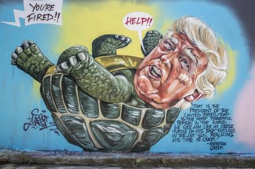 La tartaruga obesa