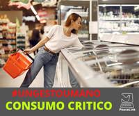 Criteri guida per il consumo critico
