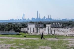 Le masserie di Taranto contaminate dalla diossina e i pascoli adiecenti non verranno bonificate