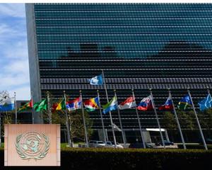 ONU, Palazzo di vetro. Dove è stato approvato il 7 luglio 2017 il TPAN
