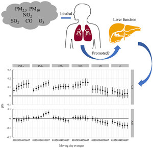 Fegato e inquinamento dell'aria