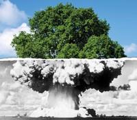 PeaceLink: disarmo nucleare e inquinamento atmosferico
