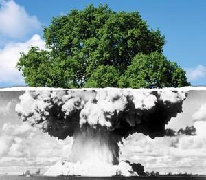 Il riarmo nucleare e l'inquinamento atmosferico sono dettati da un sistema malato: da poteri forti distinti e separati, ma comunque poteri forti
