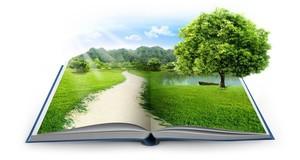 La scuola per il futuro, corso di educazione ambientale