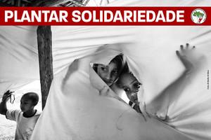 """campagna """"Plantar Solidariedade, Colher Resistência!"""""""