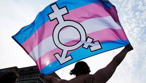 Manifestazione per i diritti della comunità LGBTI (Foto Público)