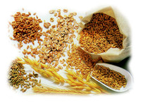 Allarme per i cereali: la produzione da 5 anni non copre il fabbisogno