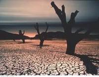 Cambiamenti climatici o di coscienza?