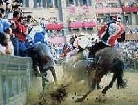 Cavallo cade e muore, dramma al Palio