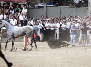 Palio di Siena 2004