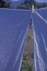 Usa: asciugare la biancheria diventa uno spreco di energia