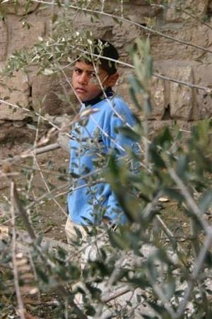 Gerusalemme 2. Foto inviata da Gabriele Viviani, fotoreporter
