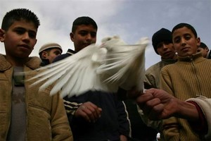 Gerusalemme 12. Foto inviata da Gabriele Viviani, fotoreporter