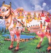 Raffigurazione induista della mucca