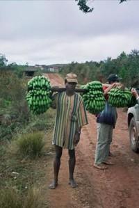 il venditore di banane