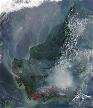 Borneo: foto dal satellite