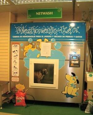 lavatrice per cani