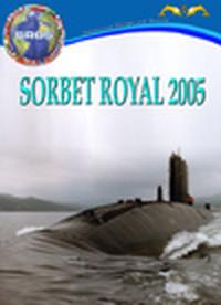 "L'esercitazione Nato ""Sorbet Royal 2005"""