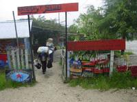 Messico : l' EZLN lancia l'allarme rosso