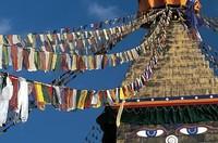 Lo sfruttamento minerario cinese impazza e inquina il Tibet