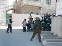 Gerusalemme - Volontari Christian Peacemaker Team.