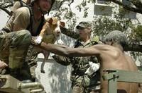 Katrina e gli animali. Storie di sopravvissuti.
