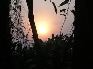 Un sole altro (foto di Fabiana D'Ascenzo - 21/08/05)