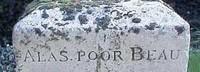 Lapidi e cimiteri per gli amici a quattro zampe: perché no?
