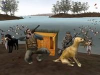 Una ricetta anti-virus: sospendere la caccia