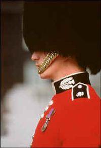 Cercasi colbacco sintetico per le guardie della regina