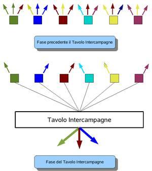 Figura 1: dalle singole associazioni occasionalmente cooperanti al coordinamento del Tavolo Intercampagne.