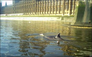 Londra 21 gennaio 2006